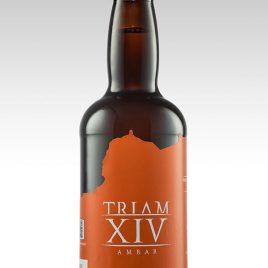 TRIAM XIV Ambar