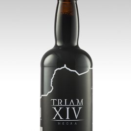 TRIAM XIV Negra
